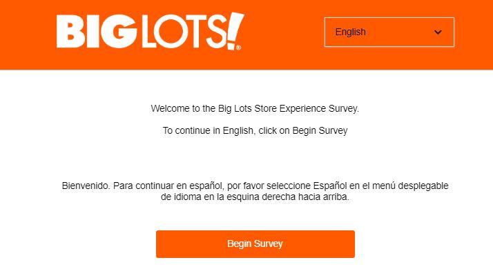 BIG LOTS Survey 1