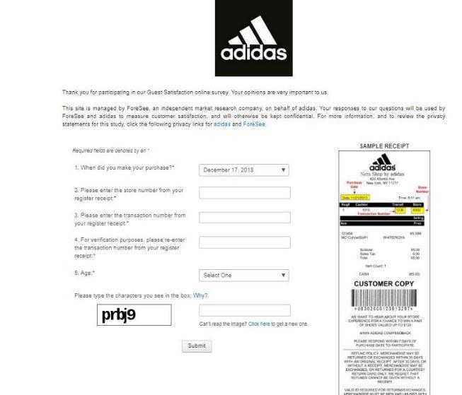 Adidas Survey