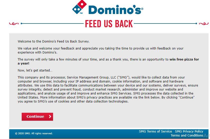 Domino's Survey