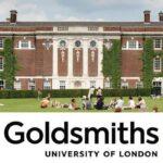 Goldsmiths Survey Prizes