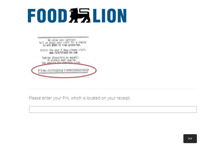 Talk To Food Lion Survey