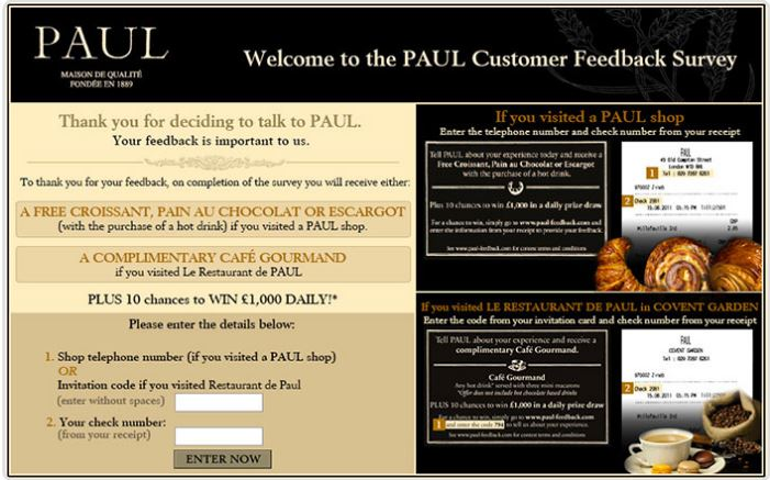 Paul Feedback Survey