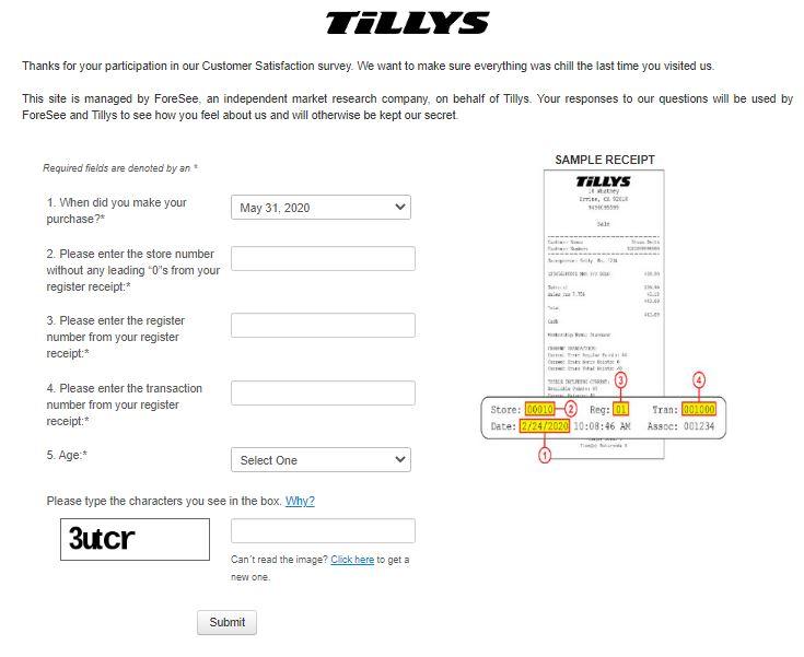 Tilly's Survey